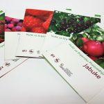 Izrada i štampa pozivnica i vizit kartica Novi Sad Liman ABC studio